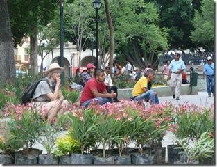 oaxaca 2010 07 05 zocalo turistas